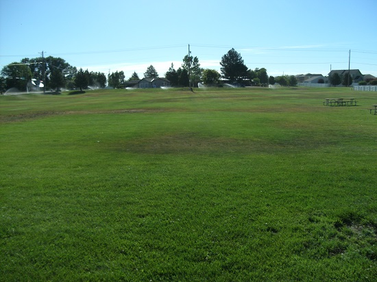 Large grassy field with two picnic tables